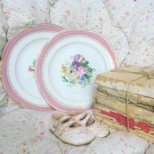 Beautiful pair of vintage French porcelain plates
