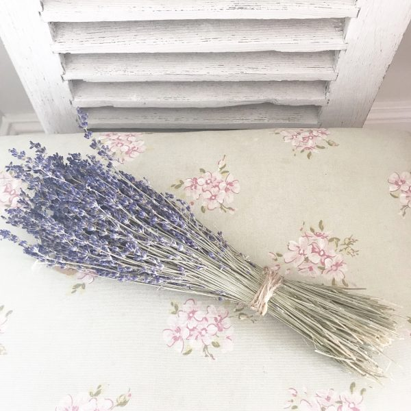 Beautiful dried lavender bunch