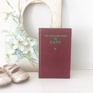 Lovely 'Cats' observer book