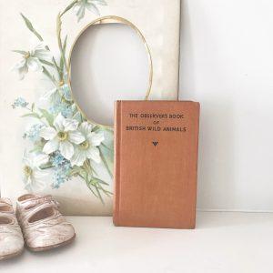Gorgeous little 'British Wild Animals' observer book