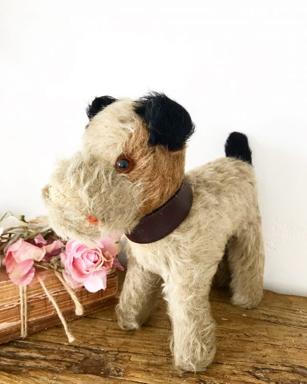 Cute little vintage mohair terrier dog