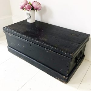 Charming painted vintage storage trunk