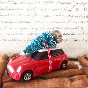 Beautiful mini cooper car with bottle brush tree