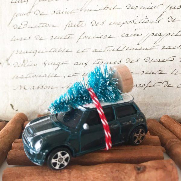 Gorgeous little mini cooper car with bottle brush tree