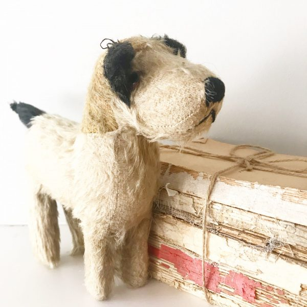 Adorable vintage mohair terrier dog