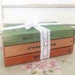Wonderful bundle of worn observer books